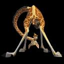 Madagascar-Melman-icon